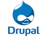 TEI integrate, develop, and customize Drupal